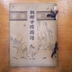 조선고적도보 9 (朝鮮古蹟圖譜 9)